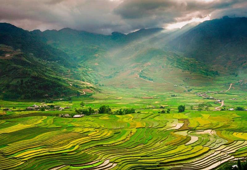 Ruộng bậc thang Yên Bái - Lìm Mông