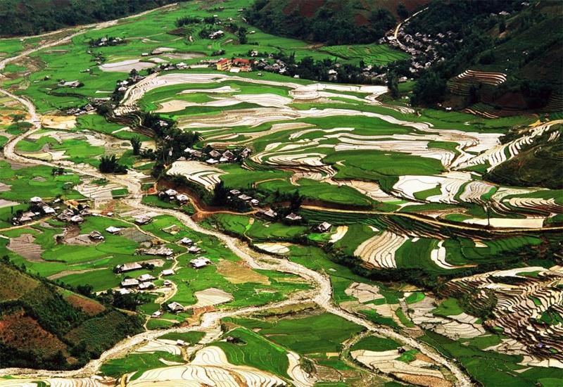ruộng bậc thang Yên Bái - lìm Thái