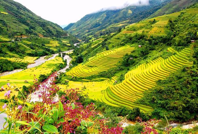 Du lịch Tây Bắc ruộng bậc thang - Thung lũng Mường Hoa