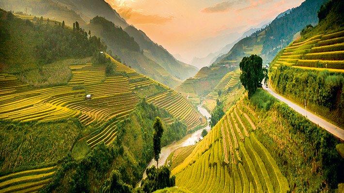 Khung cảnh tuyệt đẹp của những nấc thang ruộng bậc thang Yên Bái bên xã Tú Lệ