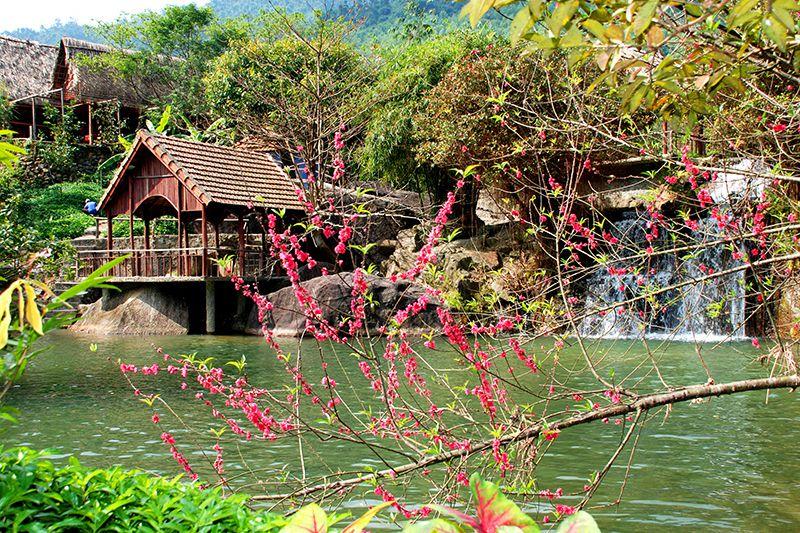 Đi du lịch Đà Nẵng dịp lễ tết dương lịch