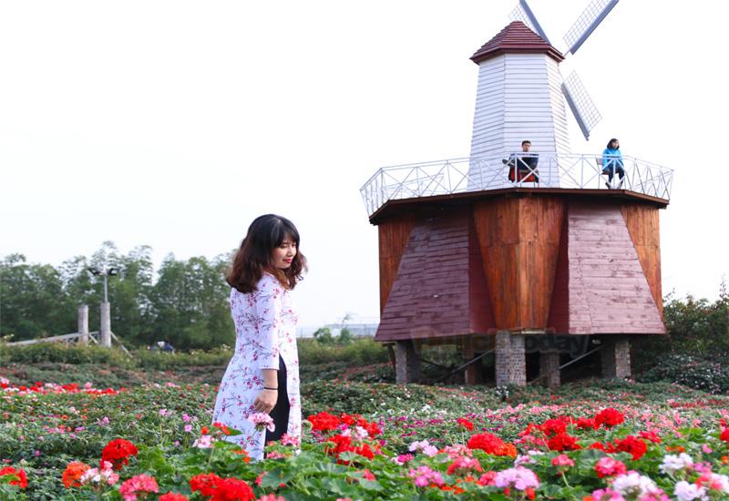 thung lũng hoa Hồ Tây - địa điểm sống ảo khi đi du lịch Hà Nội mùa thu