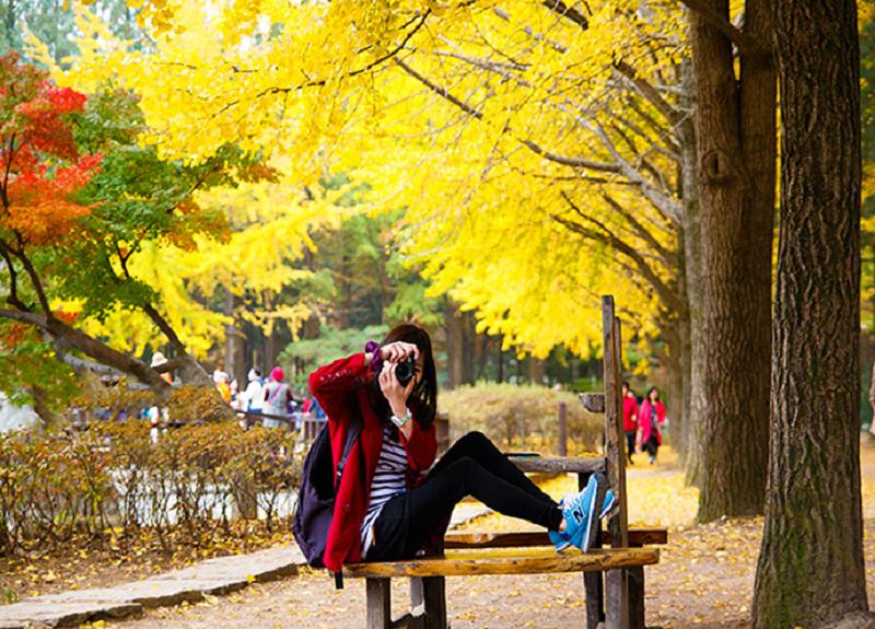 Lựa chọn trang phục khi du lịch Hàn quốc vào mùa Thu