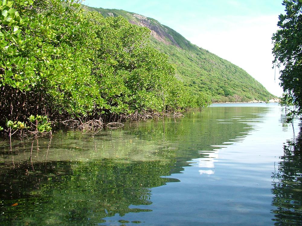 Du lịch Côn Đảo không thể nào bỏ qua bãi Đầm Trấu