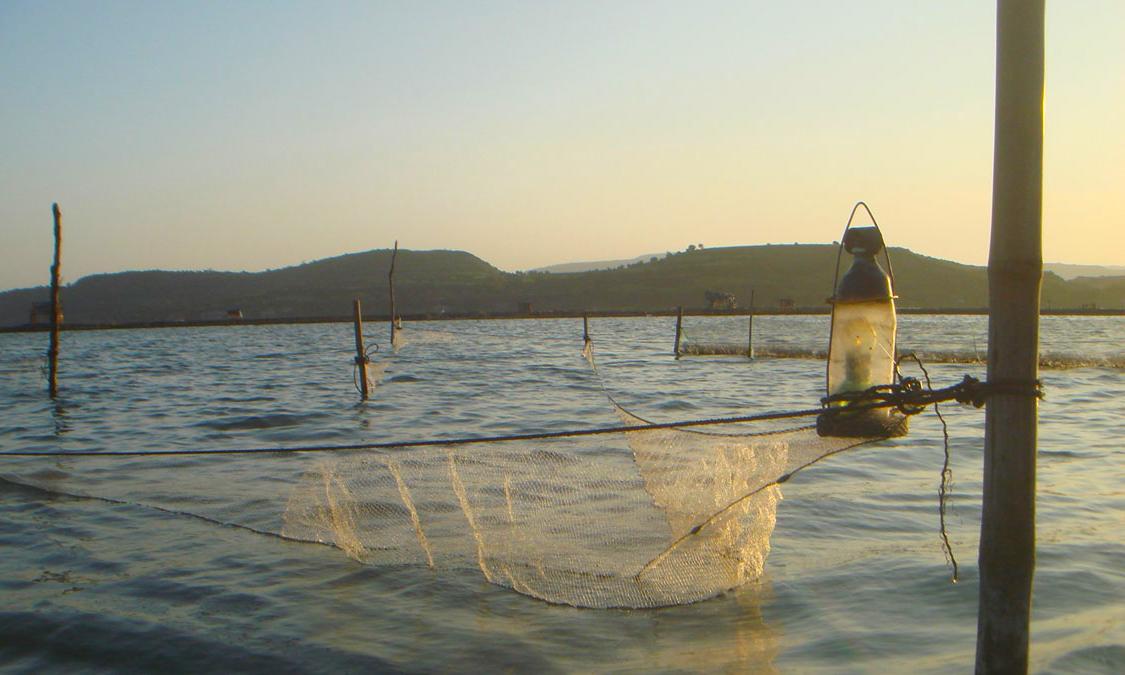 Đầm Ô Loan không chỉ thơ mộng mà còn là nguồn sống của rất nhiều ngư dân quanh đầm.