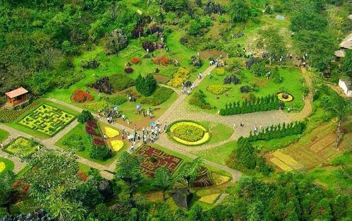 Vẻ đẹp khung cảnh bên vườn hpa Hàm Rồng Sapa