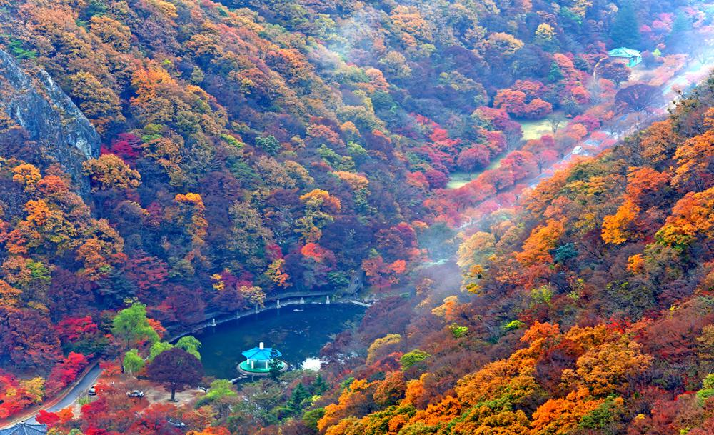 Khung cảnh đẹp tuyệt vời của mùa thu trên vườn quốc gia Naejangsan